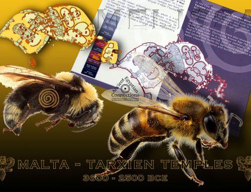"""Melissa"" – ""Bee"""