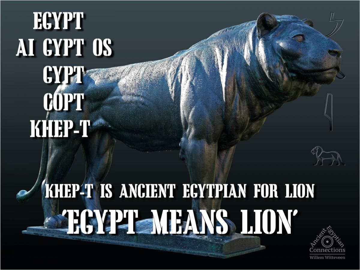 The Egyptian Lion